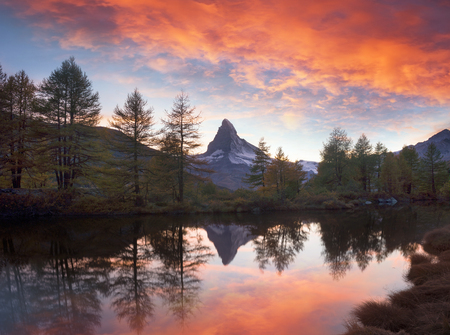 Autumn larches on the background of the Matterhorn and autumn in the Alps. The clear water of the mountain lake Grindjisee is a local landmark and a bright beautiful landscape.