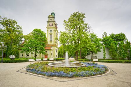 Landscaped arboretum in the town of Oliwa near Gdansk, with an abundance of beautiful flowers and trees, bushes, landscape design 版權商用圖片