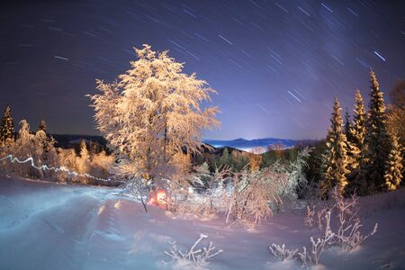 Severe frost in the mountains, frost and ice on the branches and beautiful art lighting creates a New Years mood under the starry sky of the Galaxy on the Alpine fields in the Carpathians, Ukraine 写真素材