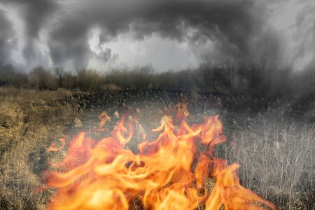 Arson of dry grass leads to mass fires, death in the flame of plants and animals, birds, destruction of anthill houses. The air is poisonous, carcinogens.