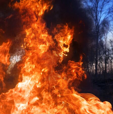 Arson of dry grass leads to mass fires, the death of plants and animals, birds, the destruction of forests, houses burn. Poisonous gases, carcinogen, are released into the air. Image of a fiery devil.