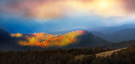 A high-voltage power line runs through the Carpathian Mountains in Ukraine in Eastern Europe. Ancient beech forests on steep slopes in autumn yellow and red at sunrise