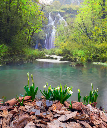 New life in spring in the mountains of the Alps, Carpathians and Tatras with beautiful snowdrops against the backdrop of snowy peaks and lakes. The wild, uninhabited nature is beautiful. Plitvice waterfall.