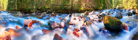 River at sunrise in the Carpathian forest - fast jet of water at slow shutter speeds give a beautiful fairy-tale effect. Ukraine is rich in water resources, in the Carpathian Mountains is legendary good ecology 版權商用圖片