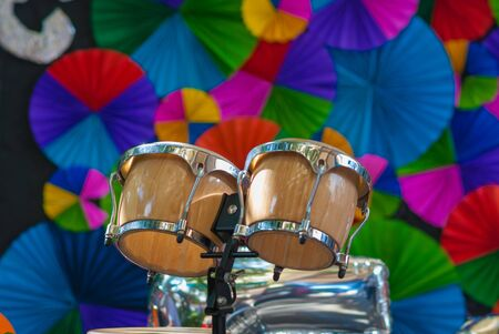 bongos: bongos, bongo drum