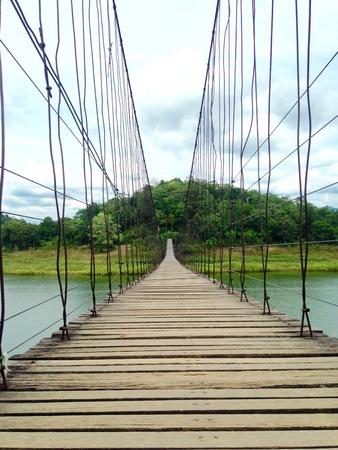 bridge in nature: Suspension bridge