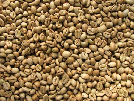 background of green robusta coffee beans from Uganda Banco de Imagens