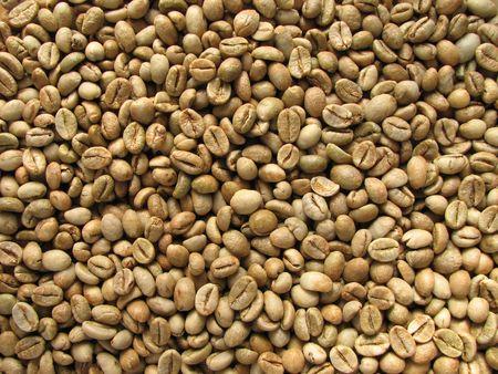 sfondo verde di chicchi di caff� robusta da Uganda Archivio Fotografico