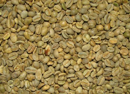 green bean: green arabica moka kadir blend coffee beans background