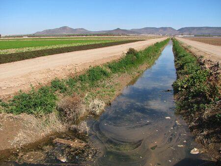 vervuilde irrigatie ditch in de imperial valley, Californië Stockfoto