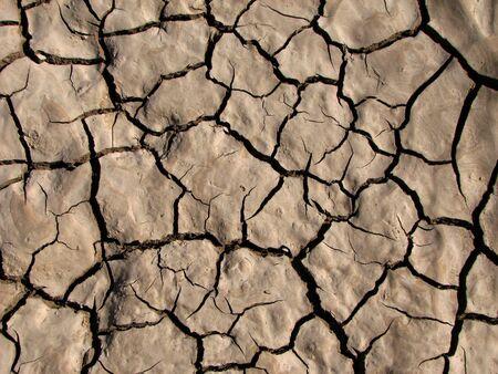 crack: mud shrinkage cracks in dried clayey soil