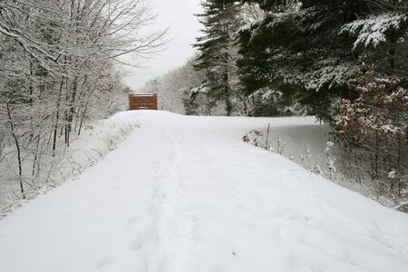 tree lined path leading to a red brick and stone building winter scene with fresh snow Stock Photo - 3612566