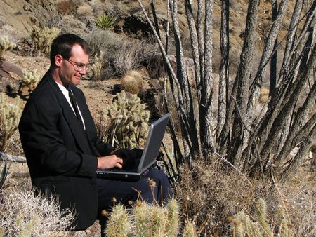 types of cactus: a man in business attire works on a laptop sitting on a rock in the desert surrounded by cacti Stock Photo