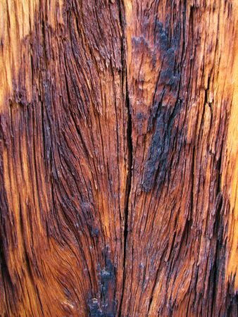 background of weathered burned wood showing grain photo
