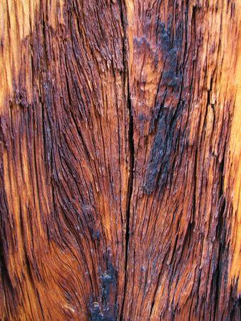 sandblasted: background of weathered burned wood showing grain