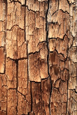 flaking splitting pine wood background texture