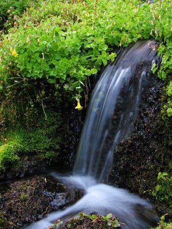 source: water from a spring spills smoothly over a small waterfall  Stock Photo