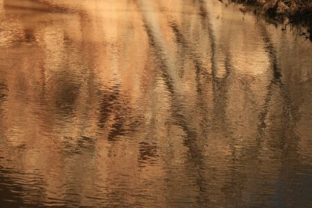 evening reflection of trees and cliffs on rippling stream surface
