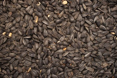 background of black oil sunflower seeds Stock Photo - 3747877