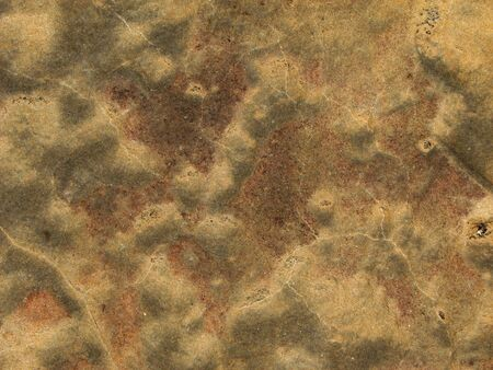 mottled: mottled sandstone background surface