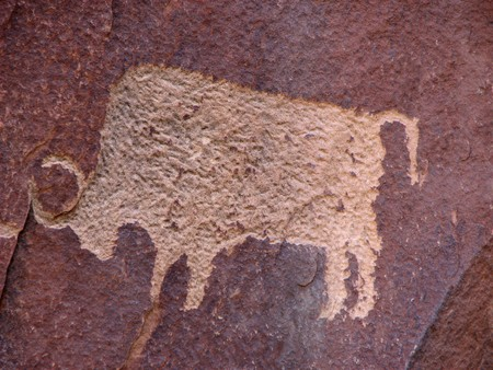 anasazi petroglyph of bison on reddish brown sandstone wall
