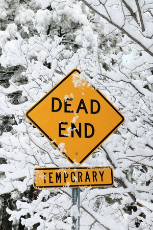 end road: dead end road sign in yellow and black with snow and snowy branches