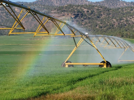 rainbow in the spray of a pivot irrigation system in a green field Stock Photo - 4307540