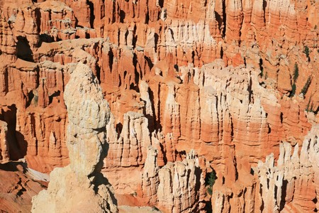 background of red sandstone hoodoos in Bryce Canyon National Park, Utah photo