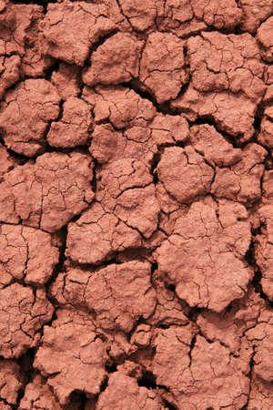 encogimiento: craqueados rojo con bentonita rico suelo de arcilla