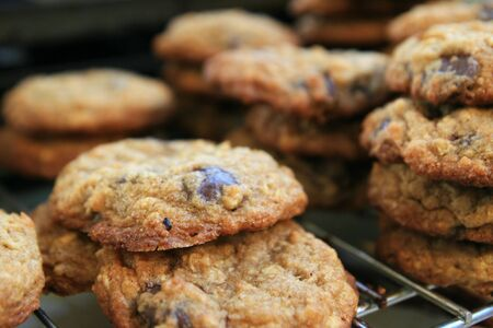 fresh baked homemade chocolate chip cookies cooling on a rack