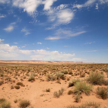 ナバホ居留地、アリゾナ州の砂漠の風景