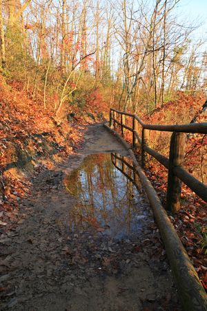 a wooden fenced trail with reflecting puddle on a fall morning Stock Photo - 5944580