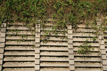 concrete crib retaining wall with vines on the top half Stock fotó