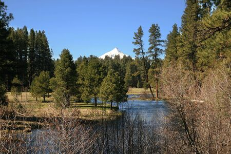 the central Oregon Cascade volcano Mount Jefferson behind the head of the Metolius River