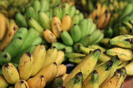 bunches of local bananas in a Thailand market Stock Photo - 6675215