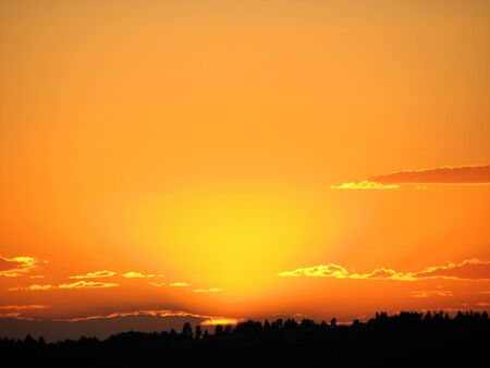orange sunset with a few backlit clouds and tree silhouette horizon Stock Photo - 7785216