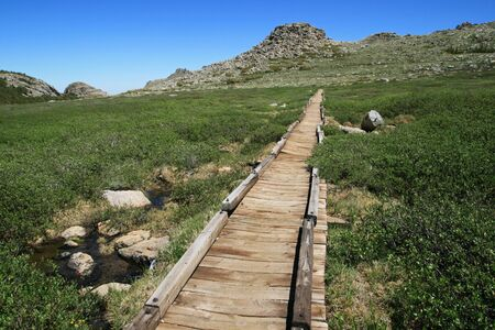 old wooden raised trail on the bears ears trail in the Wind River Range, Wyoming Stock Photo - 7785219