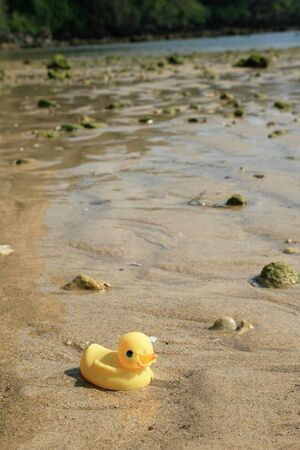 castaway: rubber duck castaway lost at sea washed up on the ocean shore