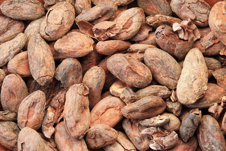 tight focus: background image of cocoa or cacao beans Stock Photo