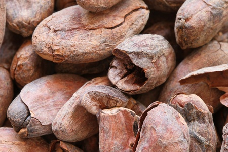 tight focus: cocoa beans macro background image