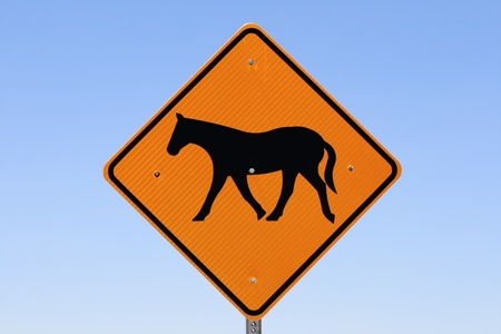 horse warning road sign with a blue sky background Stock Photo - 10418861