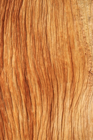 tree trunk: eroded pine trunk woodgrain background texture Stock Photo
