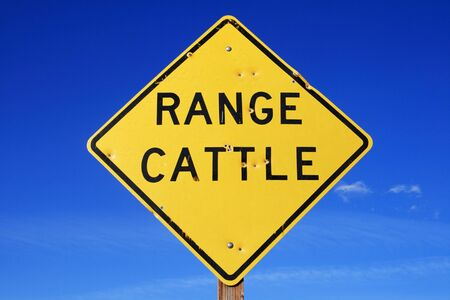 range cattle sign with bullet holes and blue sky Stock Photo - 11277419