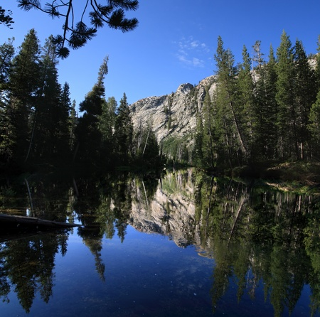 reflection of pine trees and distant cliffs on the Tuolumne River in Yosemite National Park Stock Photo - 11454388
