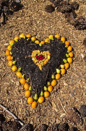heart made with oranges pears wood chips and other natural things Stock Photo - 15208208