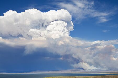 wildfire: smoke and a cloud rises above a wildfire near Mono Lake