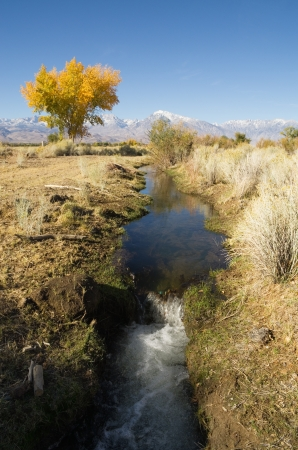 Owens Valley irrigation ditch in the fall Stock Photo - 16403339
