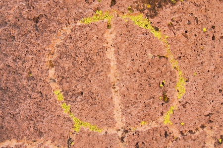 circular Native American Petroglyph or rock carving with green lichen photo
