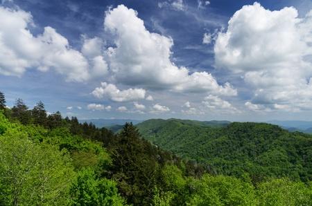 great smoky mountains national park: Great Smoky Mountains National Park landscape from Newfound Gap pass Stock Photo