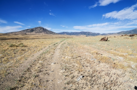 traveled: double track gravel road that doesnt get much traffic heading towards distant Nevada mountains Stock Photo